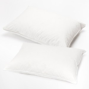 HOLA 天然羽絨防蟎抗菌對枕 軟、硬枕各一